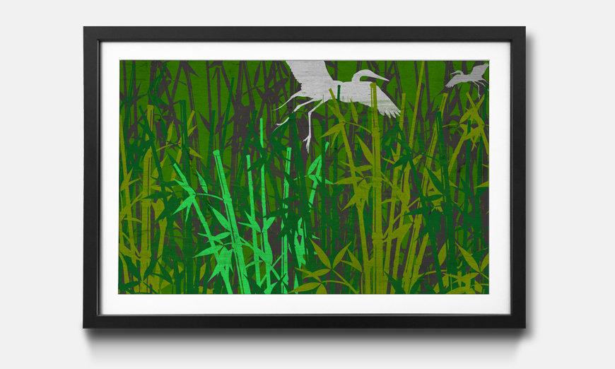 Kunstdruck gerahmt: Bambus