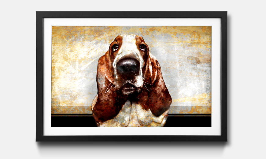 Kunstdruck gerahmt: Old Dog