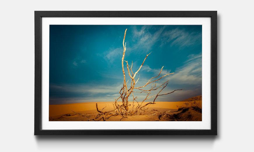 Wandbild gerahmt: Desert Landscape