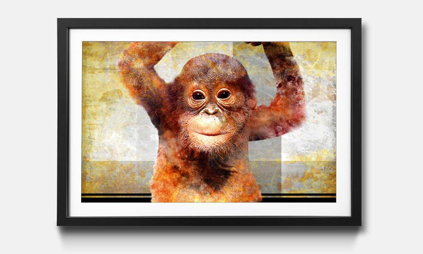 Wandbild gerahmt: Orange Baby
