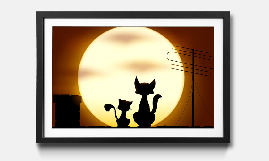 Wandbild gerahmt: Romantic Cats