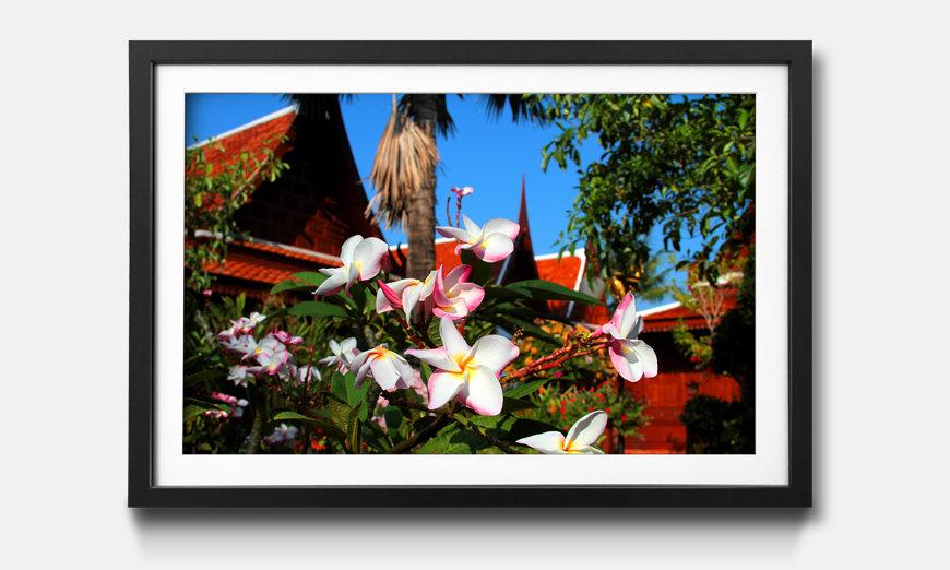 Wandbild gerahmt: Thai Day