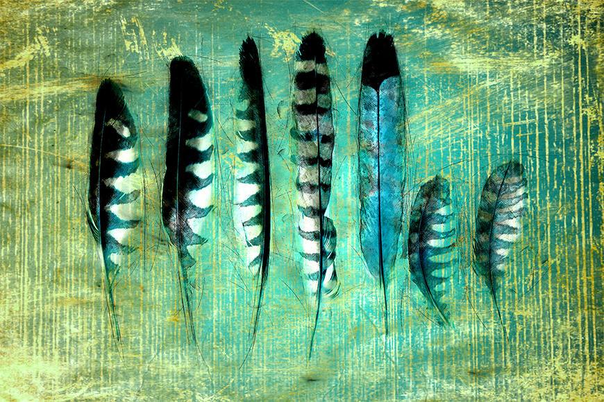 Die Vlies Foto-Tapete Blue Feathers