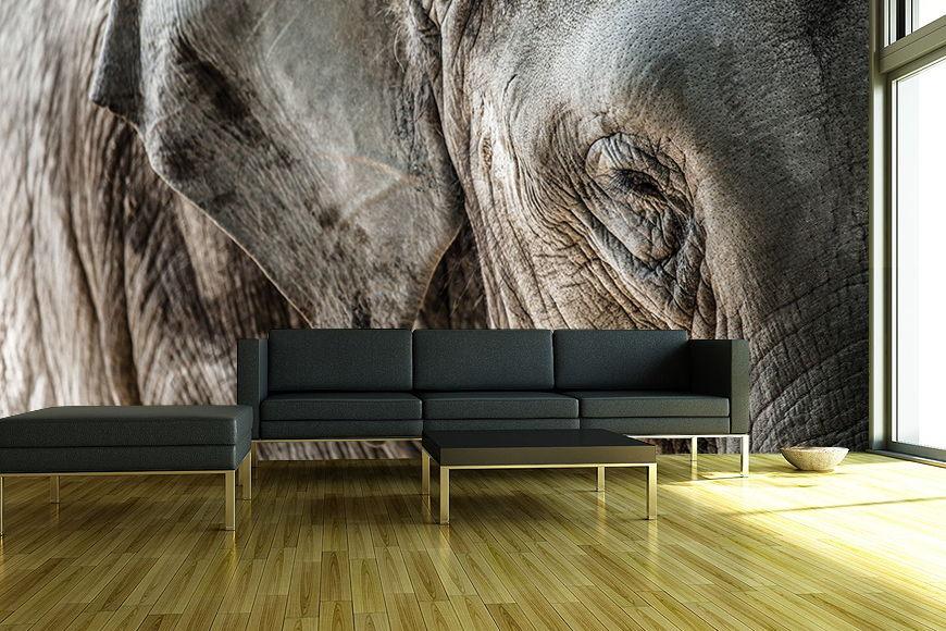 Fototapete Elefantenhaut Ab Xcm Fototapete Elefantenhaut Ab Xcm Fototapete Elefantenhaut Ab Xcm