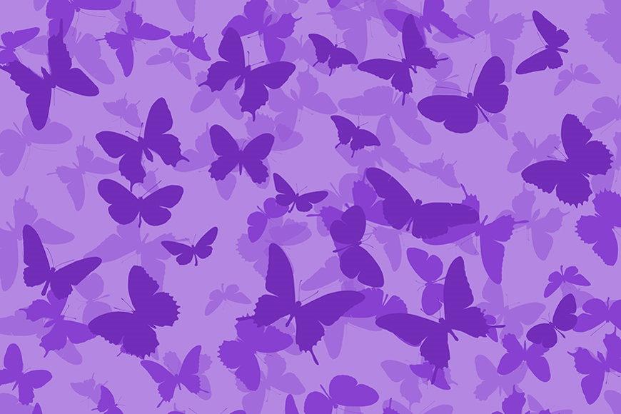 Vlies-Tapete Schmetterlinge ab 120x80cm