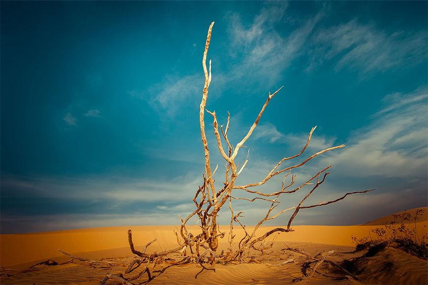 Vliestapete Wüstenlandschaft ab 120x80cm
